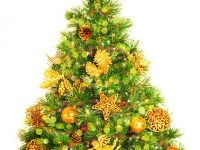Christmas-Tree-2.small_-1