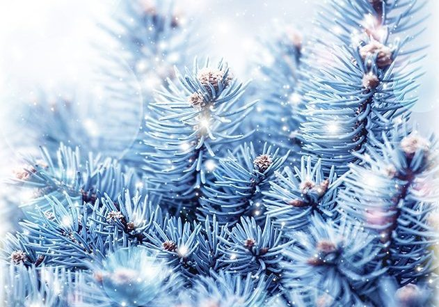 ChristmasSMall